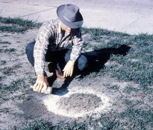 Old photo of man treating a fire ant mound with insecticide.