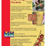 LSU Ag Center fire ant card