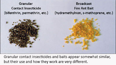 comparison images of an insecticide granule and a fire ant bait