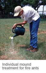 Individual mound treatment for fire ants.