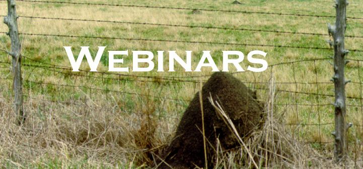 Picture of an ant mound with the word webinar on it